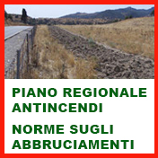 Piano regionale antincendi
